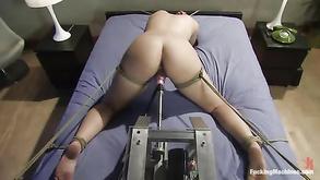 hebanowe bajki erotyczne